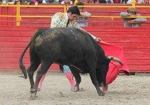 Santos e Ibelles triunfan en Ciudad Valles