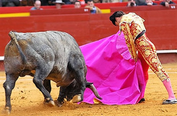 Tremendo susto sufrió Antonio Ferrera