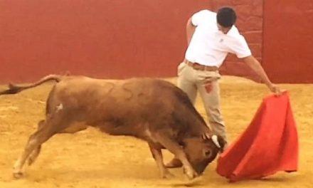 Pastor continúa en España