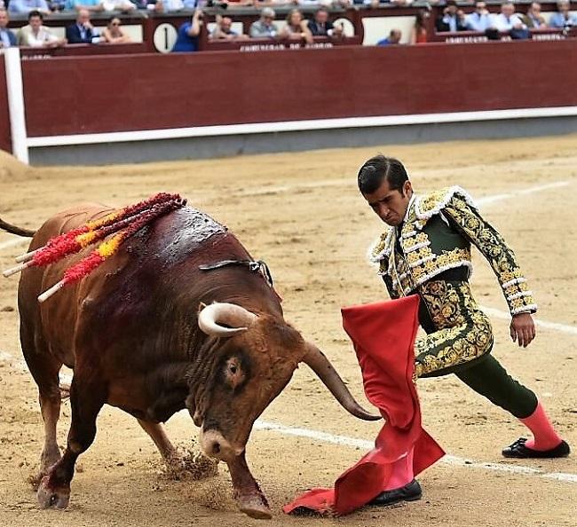 Joselito Adame anunciado en Palencia