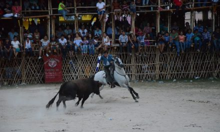 Solitaria oreja a Cuauhtémoc Ayala en Cenotillo
