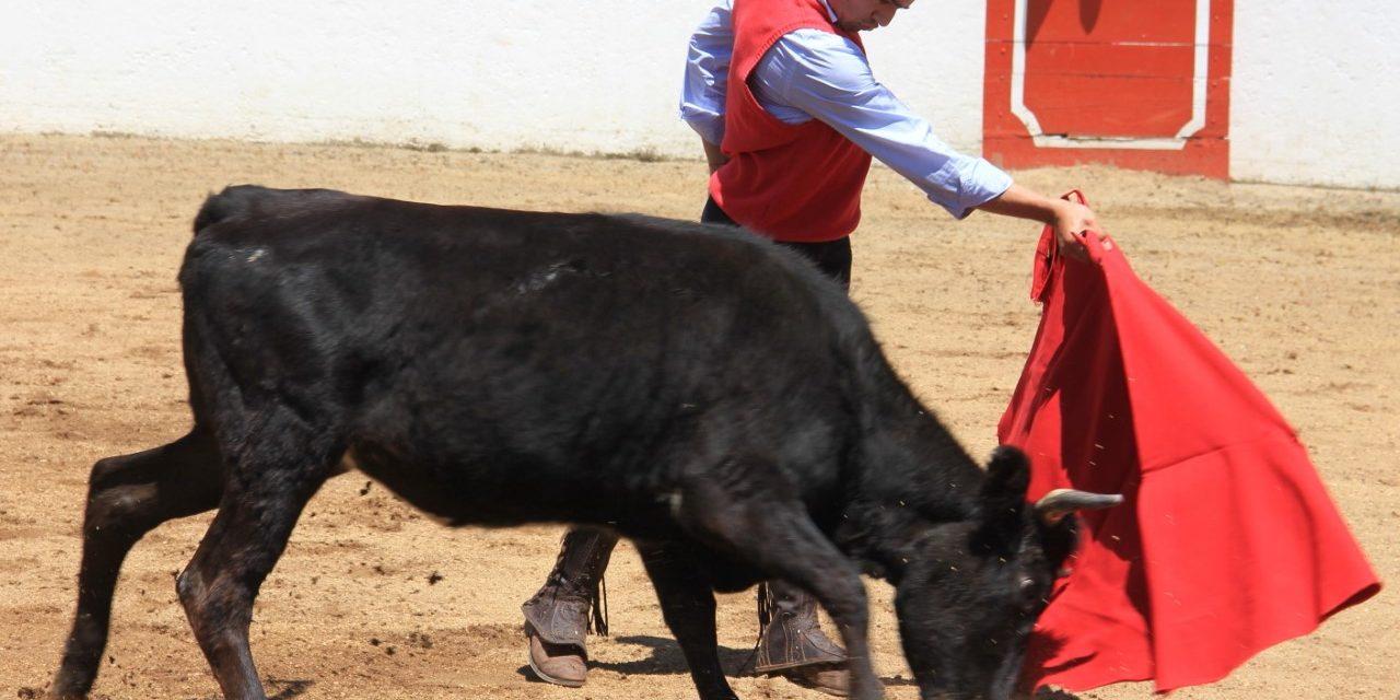 Rivera, Sotelo y Armillita IV, en Uriangato