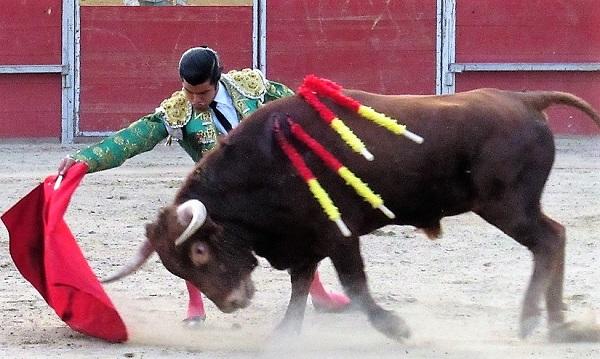 El novillero Diego San Román llega a la final