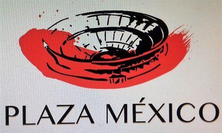 Se suspende la novillada del próximo domingo en la México