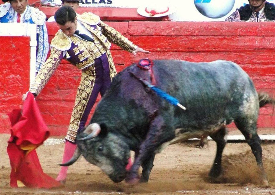 Nuevo relación de apoderamiento José Mauricio y Alejandro Peláez