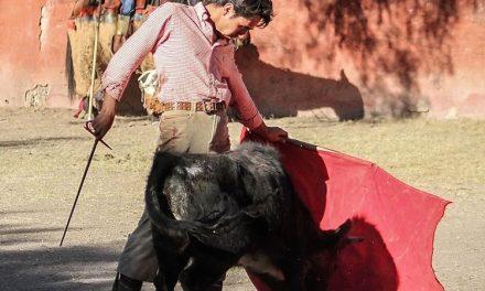El novillero Patricio Ochoa en plena preparación