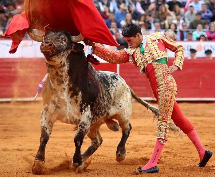 Buena actividad taurina para Sergio Flores