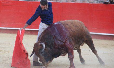 Entrevista a el genio del toreo valenciano Enrique Ponce
