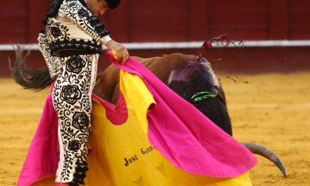 José Garrido hacia la consolidación definitiva