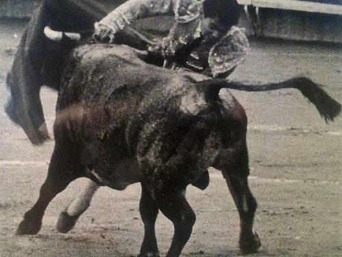 El matador retirado Guillermo Montero se recupera