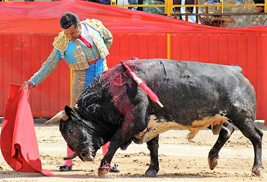Dos corridas le esperan a Alberto Huerta