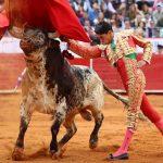 Joselito Adame y Sergio Flores anunciados en Rozas de Puerto Real