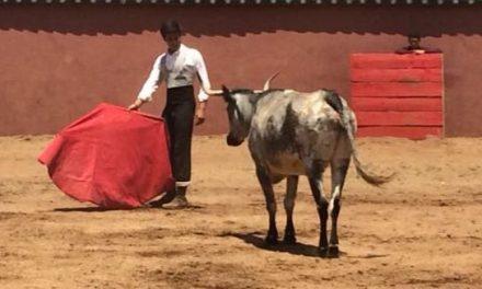 Pastor se prepara y Román con dos fechas al hilo