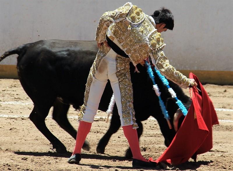 Sebastián Ibelles espera continuar su avance