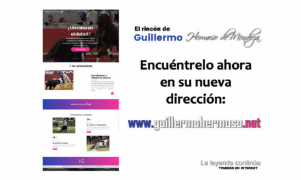 Guillermo Hermoso estrena su web