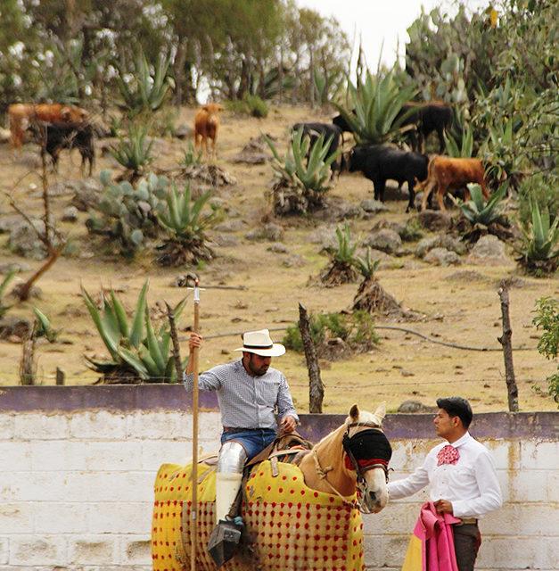 Celebra 40 años la ganadería de Felipe González