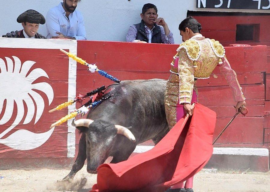 Héctor Gutiérrez debe mantener el paso