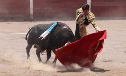 Esforzada tarde de toreros