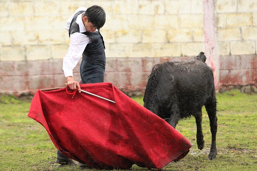Sebastián Ibelles se prepara en el campo bravo