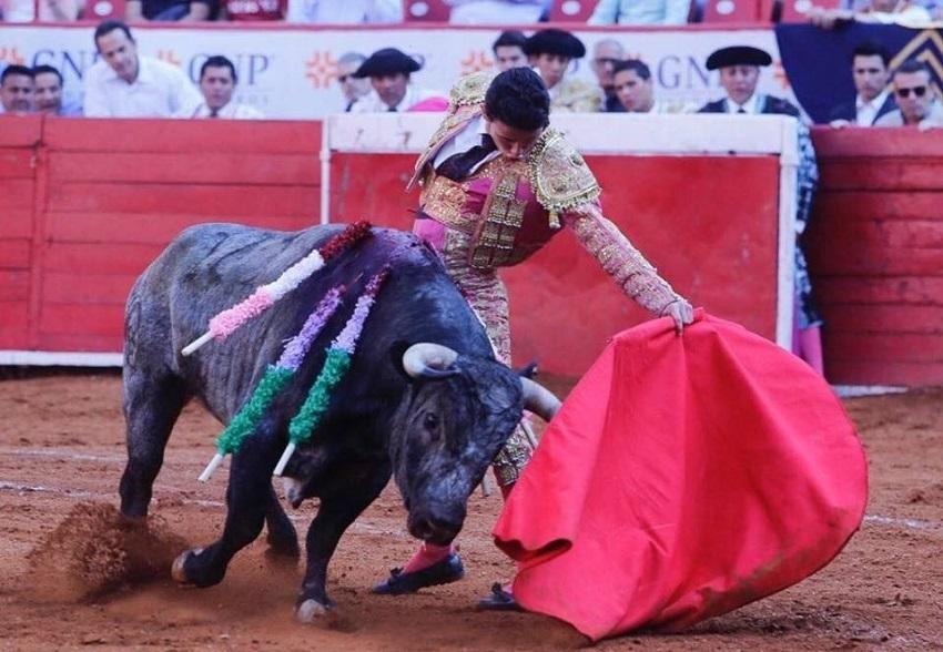 «El Galo» con varios compromisos españoles