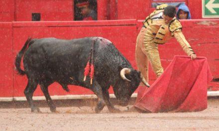 Héctor Gutiérrez toreará en España y México