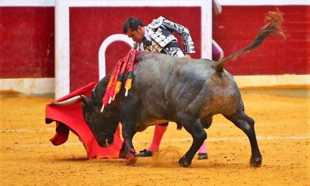 Joselito Adame muy dispuesto en Logroño