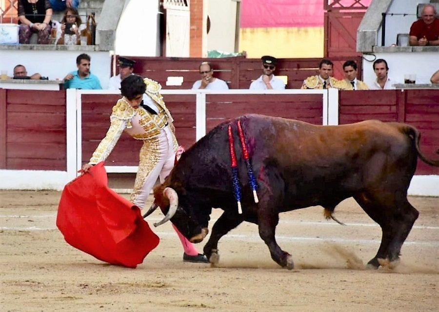 Anuncian dos corridas en Mérida