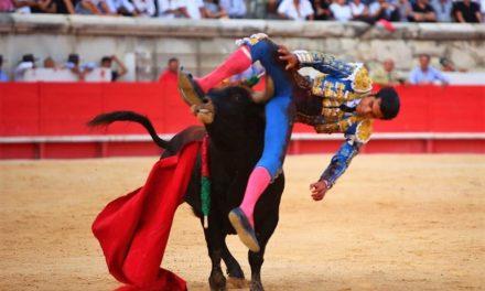 San Román sufrió grave cornada en Nimes