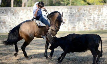 Garibay y Ventura se alistan en Santa María