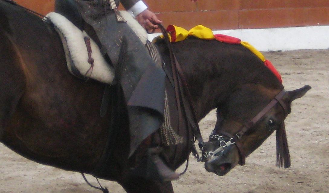 Guillermo Hermoso sale a hombros en Calkiní