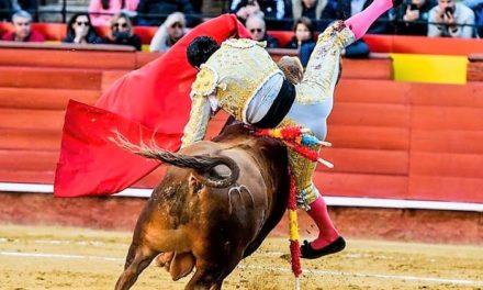 Diego San Román resultó herido en Valencia