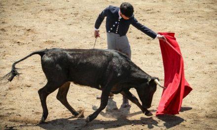 Diego Emilio realiza labores de tienta