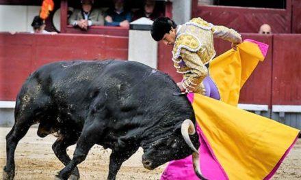 Luis David este sábado en Las Ventas