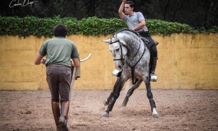 El rejoneador Leal Sebastián cierra su preparación