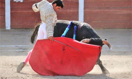 Nicolás Gutiérrez: «Estoy en proceso de maduración»