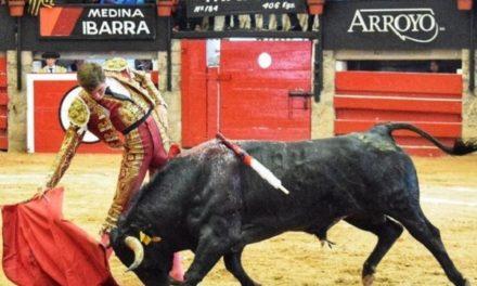 José Miguel  Arellano viajará a España