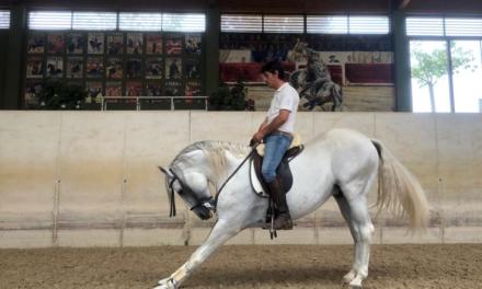 Luis Pimentel se presenta en Navarra