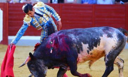 Diego San Román corta dos orejas en Villaseca