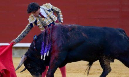 Luis David realiza la mejor faena en Palencia