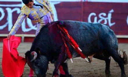Mentalizado vuelve Diego San Román