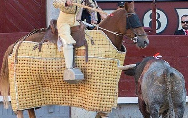 Desde 1929 fue obligatorio empetar a los caballos