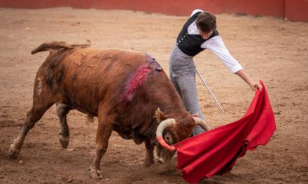 El novillero Arturo Gilio sufre percance