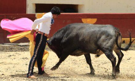 «El Mojito» se prueba con un toro