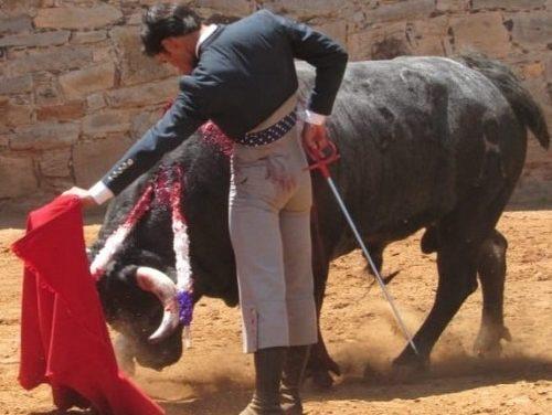 Francisco Martinez se prueba con dos toros