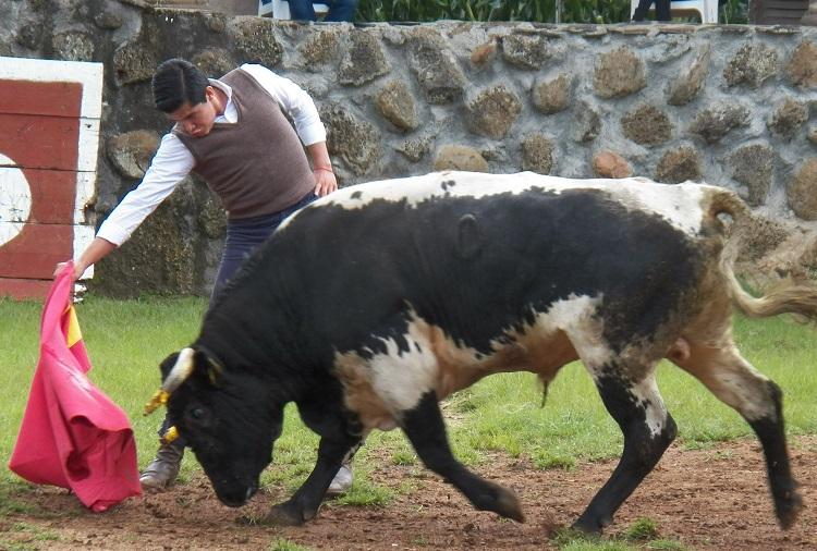 «El Moso» se midió con un toro de Farías