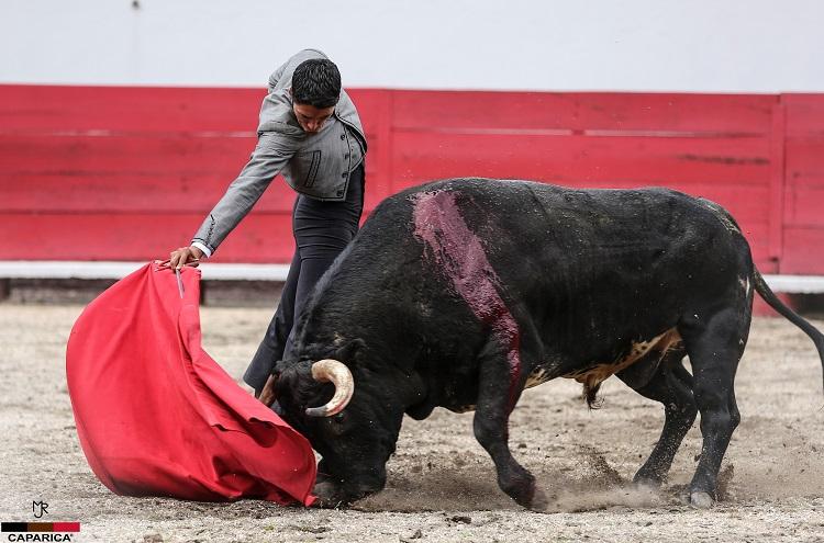 Se recrean José Mauricio y Sergio Flores