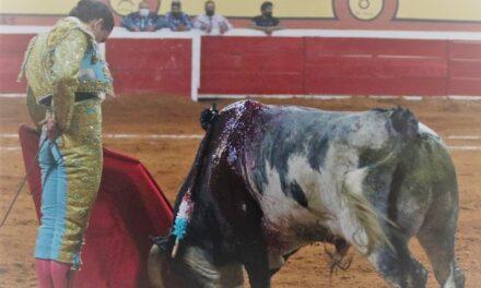 Ser torero es difícil y muy bonito