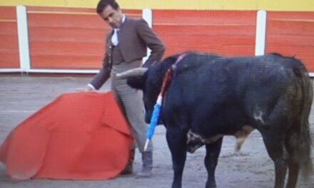 Un matador de toros para rescatarse
