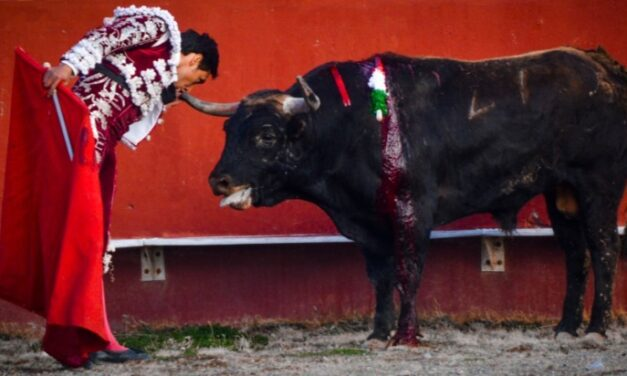 El matador «El Poeta» corta dos orejas y se lleva el trofeo en disputa